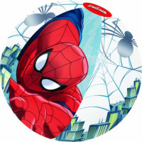 Spiderman Beach Ball